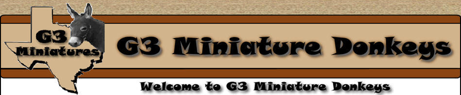 G3 Miniatures is a north Texas ranch showing and breeding miniature donkeys.