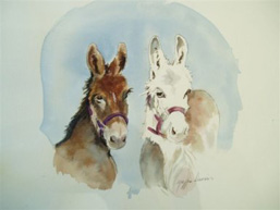 G3 Miniature Donkeys in Gainsville Texas.
